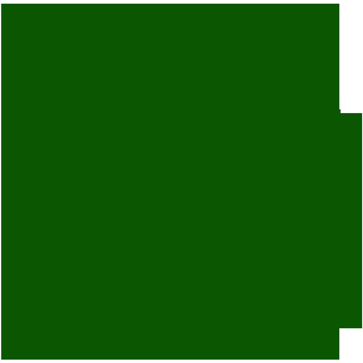 شهرداری تهران